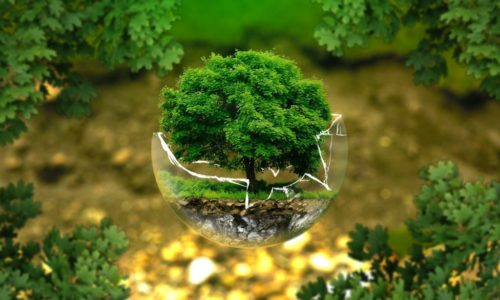 To promote efficient use of the Energy,(Water) natural resources, protect and preserve nature.