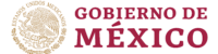 governement of mexico